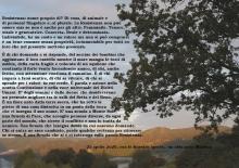 Martina Ferraro - con il panorama del Campo di Pace a 4 Voci 2012